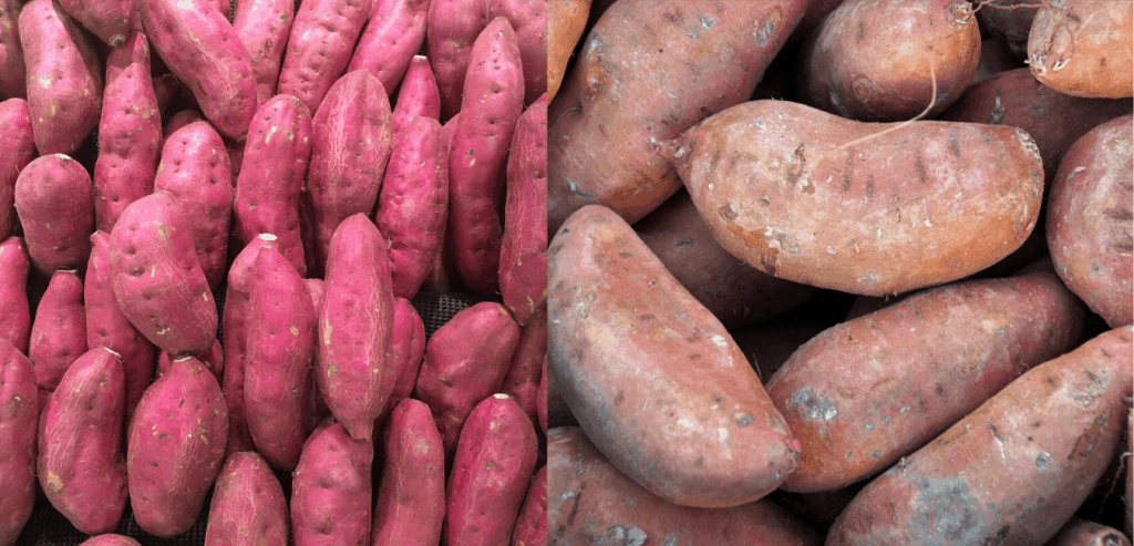 sweet-potato-image
