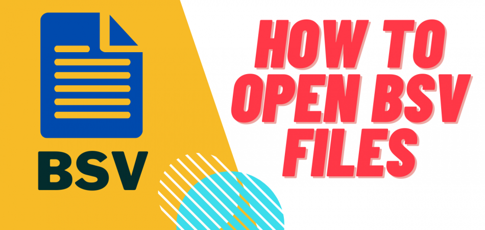 how to open bsv files